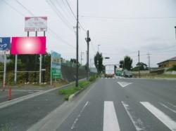 iwatukinisiharachu01